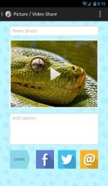 מסך שיתוף תמונה ברשתות חברתיות אפליקציית Picoli